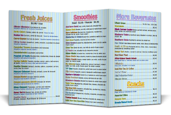 brochure printing palmetto bradenton sarasota